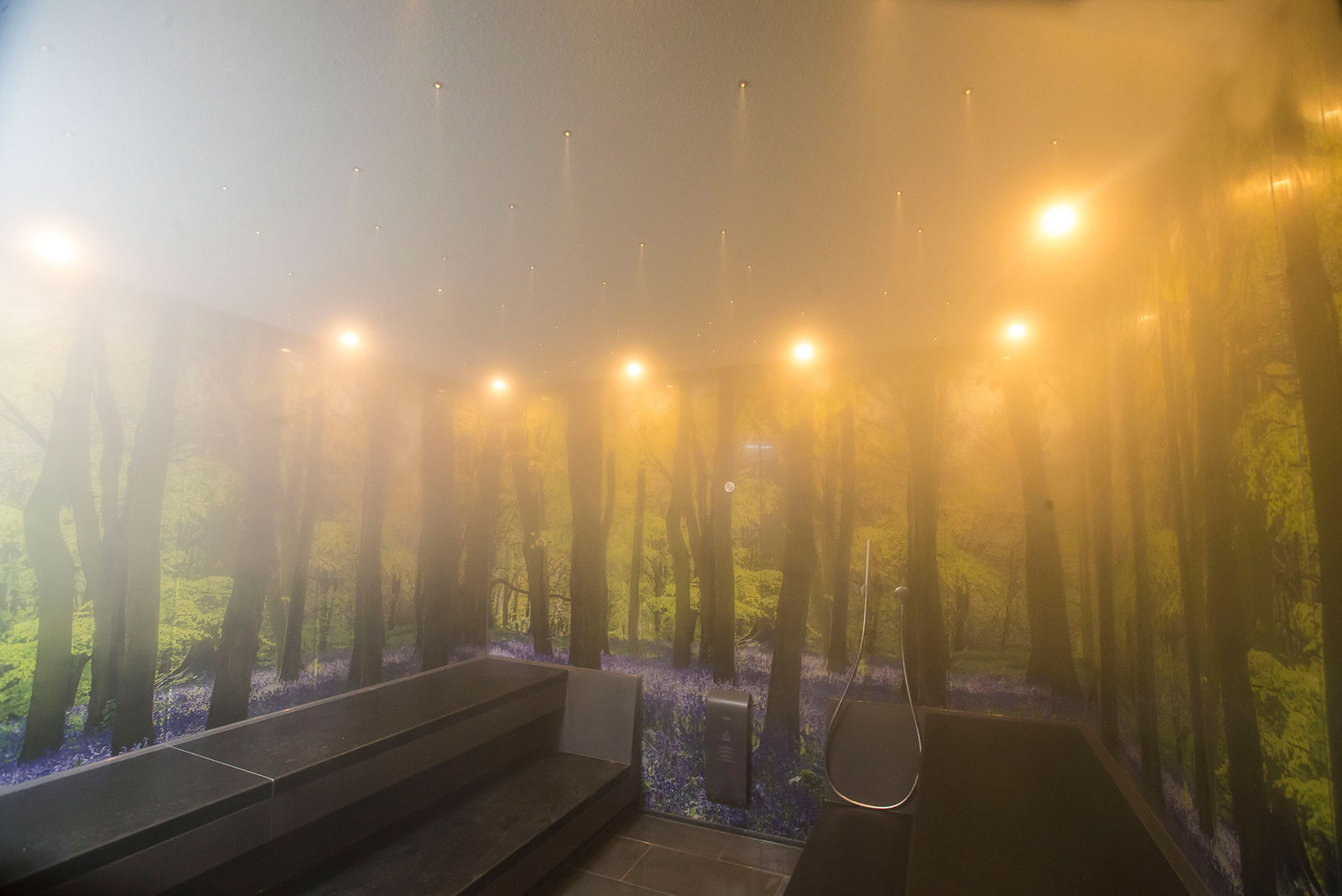 Steam Room at Monart Destination Spa; Blog