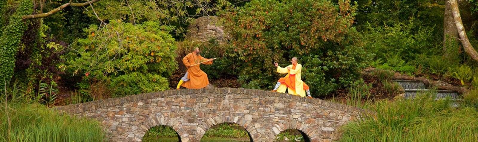 Shaolin Masters
